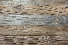 "3/4"" Elm Plank"