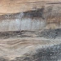 """3/4"""" x 7"""" White Oak Plank"""